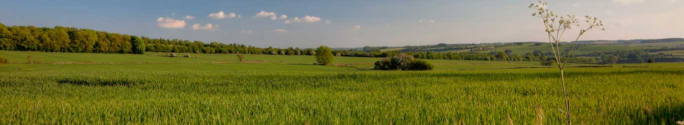 thin_banner_oxfordshire_1