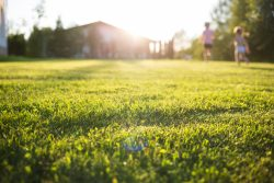 County Homesearch can assist buyers in finding properties with large gardens.